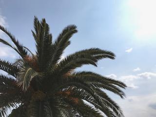 熱海のリゾートバイト